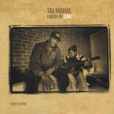 Taj Mahal  –  Labor of Love